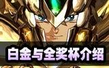 《圣斗士星矢斗士之魂》全奖杯说明 白金达成条