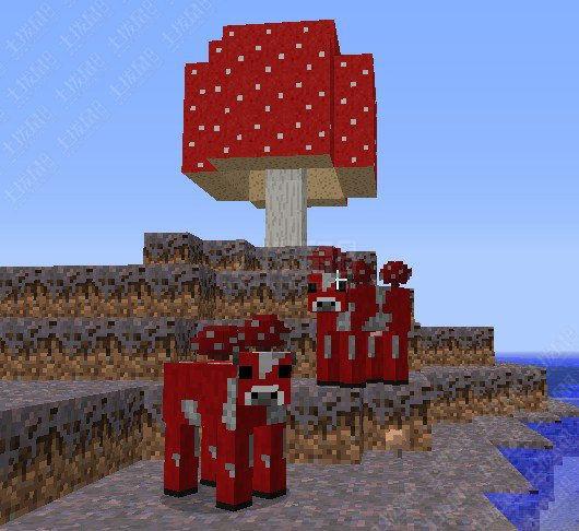 我的世界如何去蘑菇岛