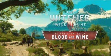 巫师3血与酒二周目存档被覆盖怎么办 存档放送